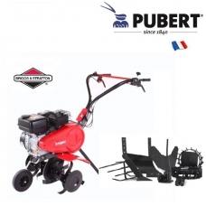 Pubert FPTERRO40B01